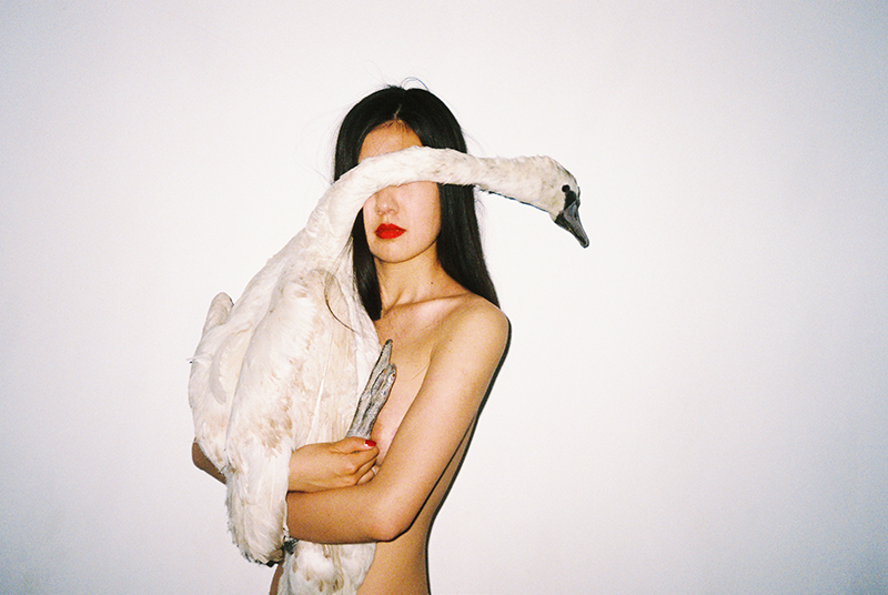 The Medium is the Message – Some Ruminations on the Work of Ren Hang